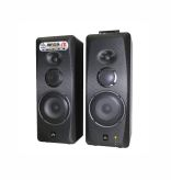 ROADMASTER - ACTIVE SPEAKER BASS16