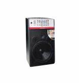 ROADMASTER - ACTIVE SPEAKER PA12
