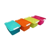 CLARIS-CONTAINER PLASTIC ARMAX BOX 1016