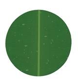 SEIV - PLATE MELAMINE WARE 1110S NFBNL PIRING CEPER 10 INCH