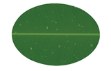 SEIV - PLATE MELAMINE WARE 1510S NFBNL PIRING OVAL 10 INCH