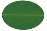 SEIV - PLATE MELAMINE WARE 1512S NFBNL PIRING OVAL 12 INCH